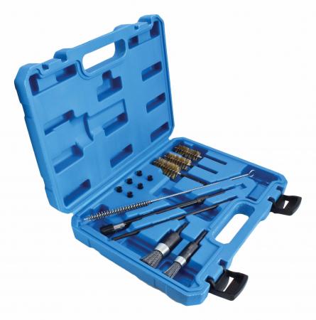 Set perii pentru curatat canale/scaune injectoare0