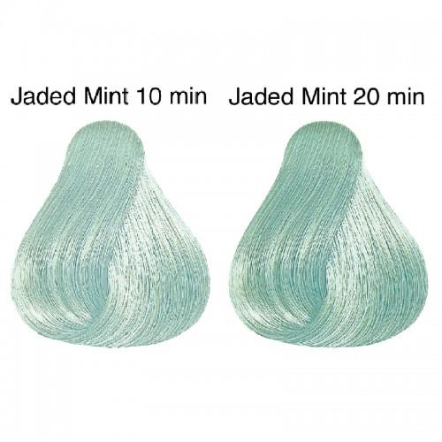 Vopsea de par semi-permanenta Wella Professionals Color Touch Instamatic Jaded Mint, 60 ml 0