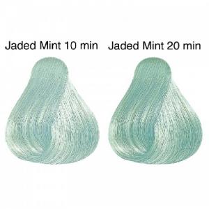 Vopsea de par semi-permanenta Wella Professionals Color Touch Instamatic Jaded Mint, 60 ml0