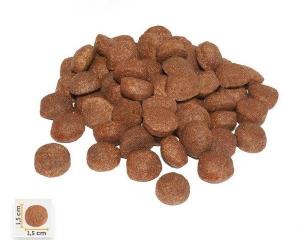 BonaCibo Adult Dog High Energy 100G1