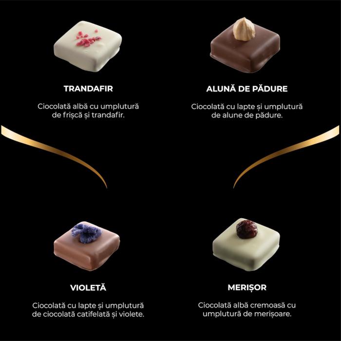 Asortiment premium 9 praline de ciocolata cu umplutura [2]