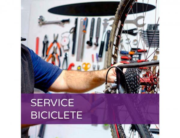 inlocuire-mansoane-bicicleta [0]