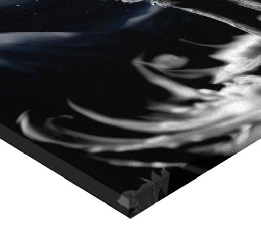 TABLOU CANVAS - LUP 3