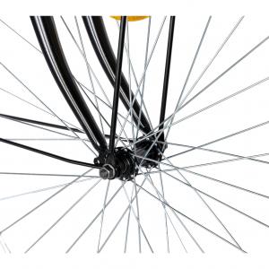 """Bicicleta CITY 28"""" Rich Exquisite R2891A, culoare negru/albastru9"""