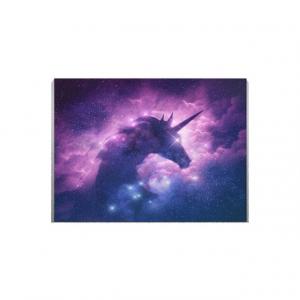 Tablou canvas -  GALAXY UNICORN1