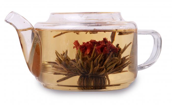 Ceainic Large Base & 10 Ceaiuri Blooming 1