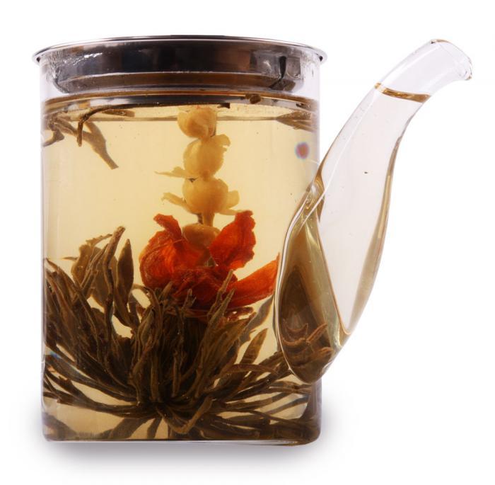 Ceainic Cup Aroma & 10 Ceaiuri Blooming 1