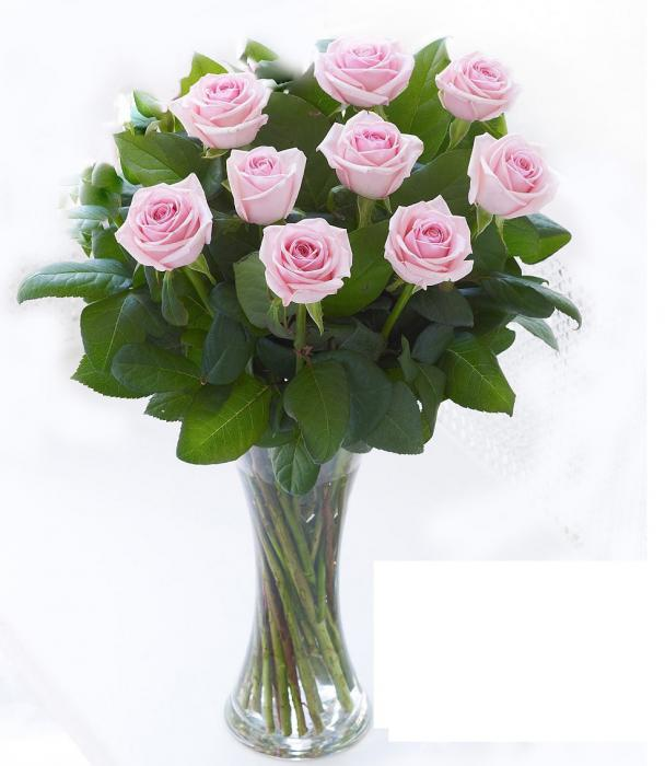 Buchet 19 trandafiri cu vază-big
