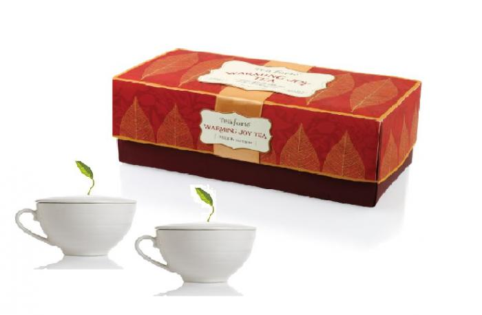 Red Passion Cup & Tea Forte 0
