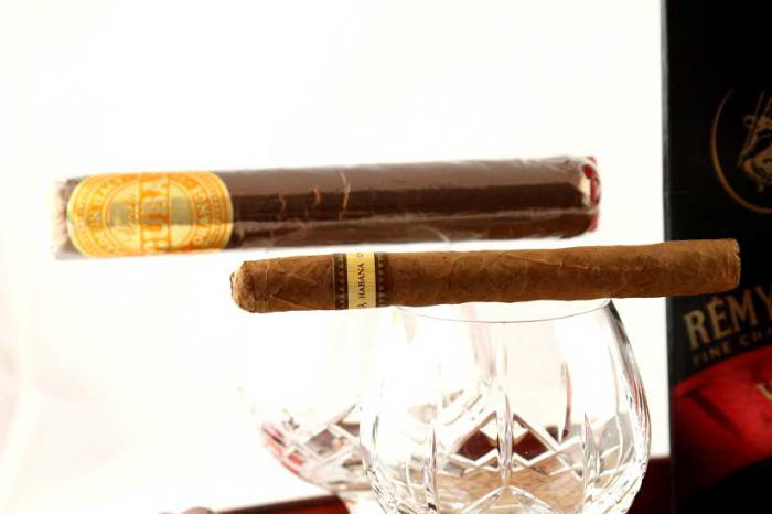 Sweet Remy Martin Cigars-big