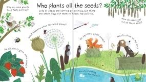 How Do Flowers Grow [3]