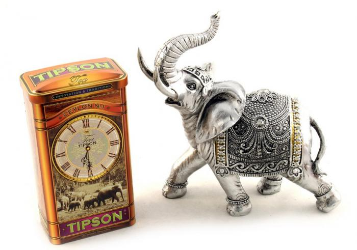 Set Cadou Horse Clock & Tipson Tea 3