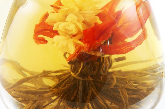 Ceainic Cup Aroma & 10 Ceaiuri Blooming 8