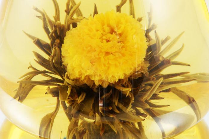 Ceainic Cup Aroma & 10 Ceaiuri Blooming 5