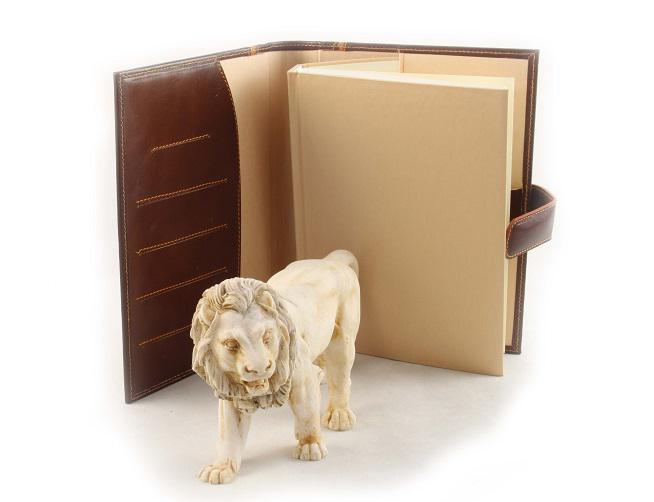 Leo & Brown Leather Notebook-big