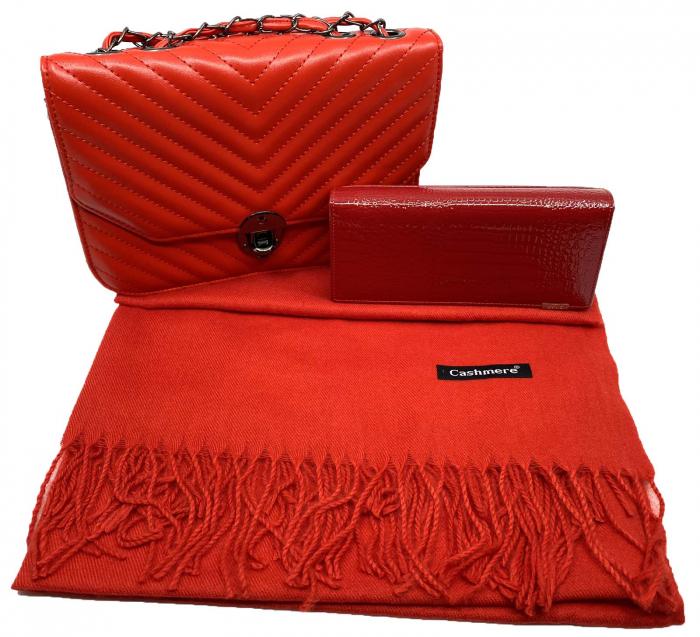 Red Glam Set Geanta, Portofel si Esarfa Casmir 0