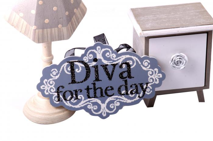 Cadou Diva For The Day + Decoratiune de Craciun din Ceramica 3