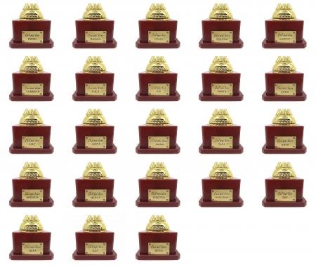 Set Cadou Personalizabil Trofeu si Medalie [4]
