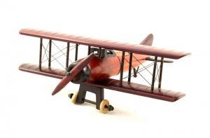 Cadou Fly Above Vine1