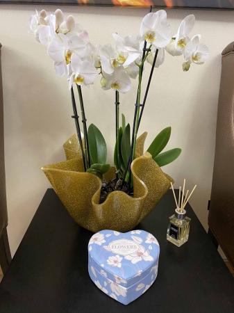 Cutie bijuterii inimioara Blue Flowers3