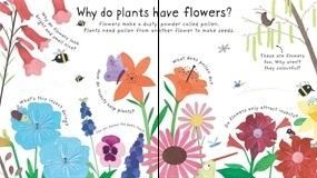How Do Flowers Grow [1]