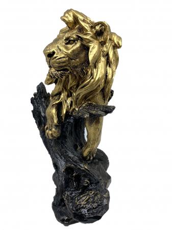 Magnificent Lion King [1]