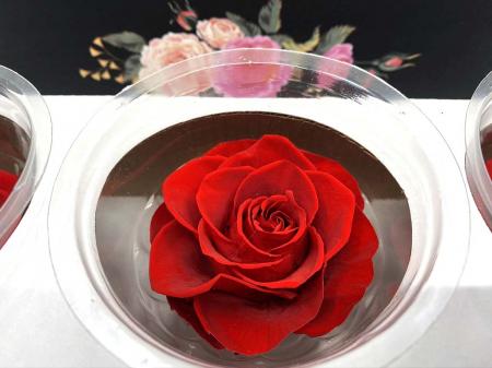 Set 3 Trandafiri Criogenati3