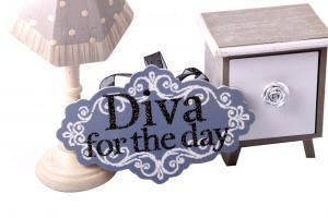 Cadou Diva For The Day + Decoratiune de Craciun din Ceramica3
