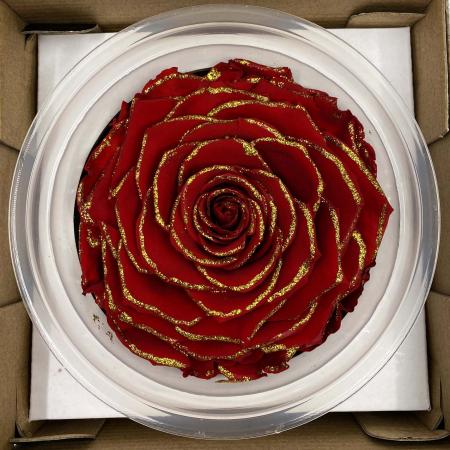 Trandafir Rosu & Auriu Criogenat XXL 9 cm [2]