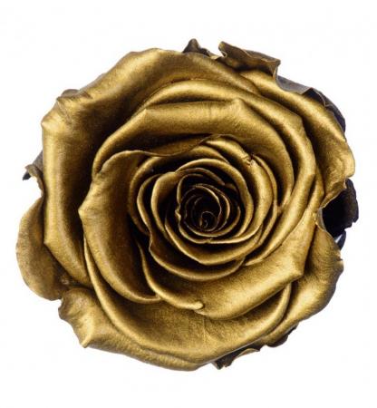 Trandafir Auriu Criogenat XXL 9 cm [0]