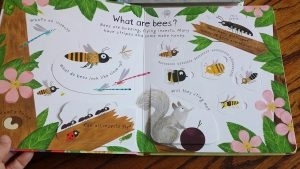 Why Do We Need Bees [1]