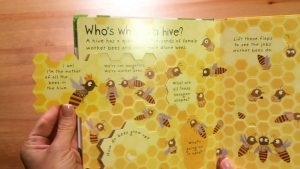 Why Do We Need Bees [2]