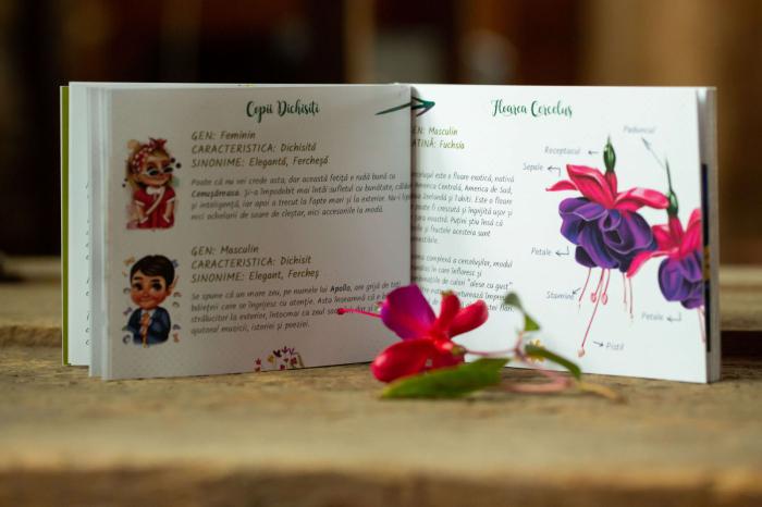 Flori, fete si baieti. Atlasul Botanic al Emotiilor 6