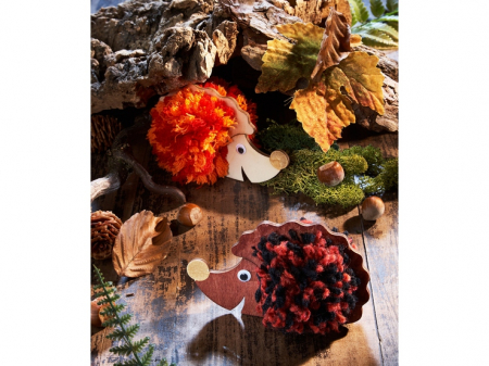 Aricii pompon - Pompon Hedgehog0