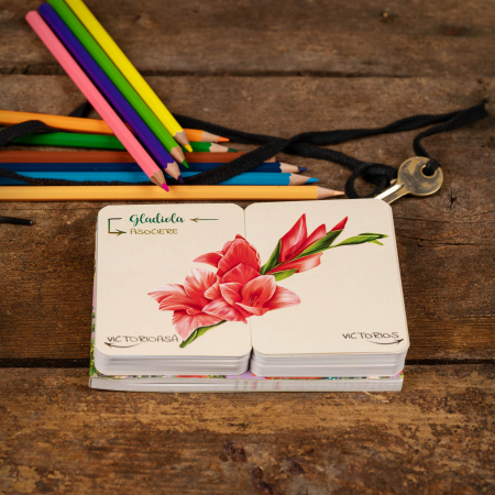 Flori, fete si baieti. Atlasul Botanic al Emotiilor7