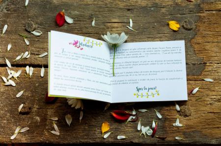 Flori, fete si baieti. Atlasul Botanic al Emotiilor5