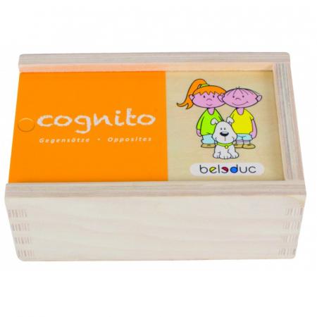 Joc Puzzle Cognito Antonime [0]