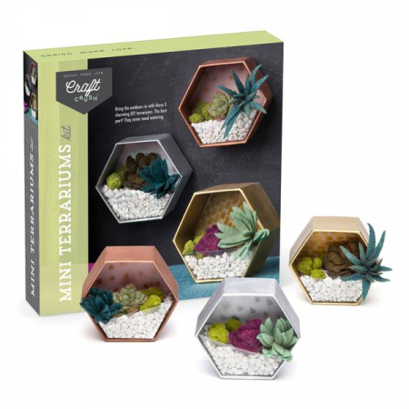 Set creativ - Mini Terrariums Kit4