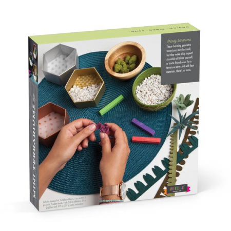 Set creativ - Mini Terrariums Kit5