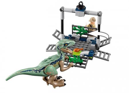 Urmarirea lui Blue - LEGO Jurassic World (75928)1