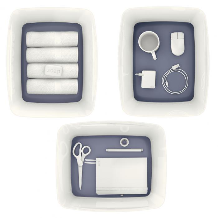 Cutie depozitare Leitz MyBox, cu capac, mare, culori duale, alb-gri 2