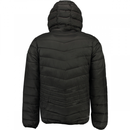 PACK 30 JACKETS DAMIEL MEN HOOD 0012