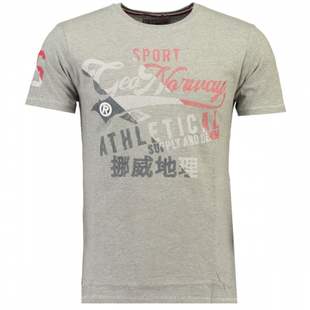 PACK 30 T-SHIRT'S JEAL SS MEN 4156