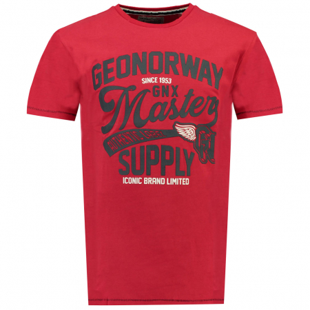 PACK 30 T-SHIRT'S JELITOR SS MEN 4155