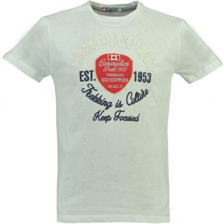 PACK 30 TSHIRTS JUSTER SS MEN CP 1004