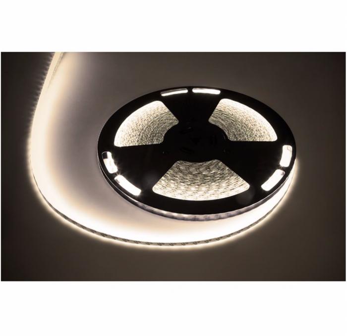 Banda LED Rebel, temperatura culoare alb neutru, lungime 25 m [1]