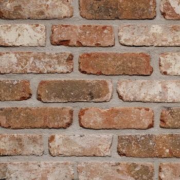 Placaj Caramida Aparenta Belle Epoque de Liege 215 x 65 x 23 mm [0]