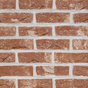 Placaj Caramida Aparenta Patrimonia Neo Romaans 215 x 65 x 23 mm [0]