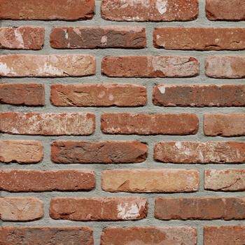 Placaj Caramida Aparenta Rustica Oud Kempisch 215 x 65 x 23 mm [0]