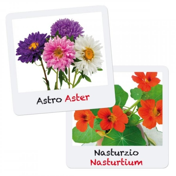Set creativ pentru copii Gioca Green plantare si crestere Flori Quercetti 0